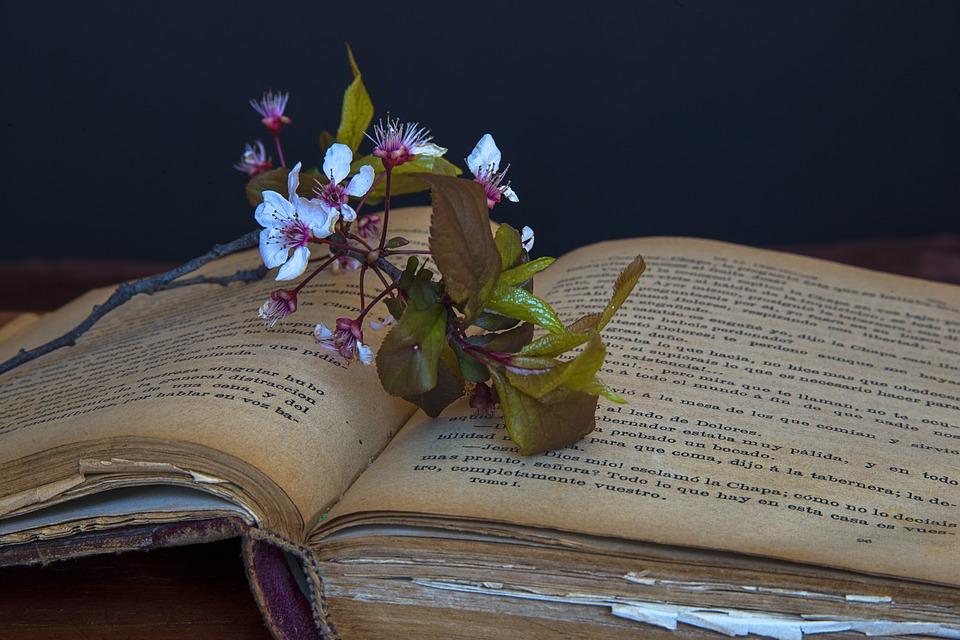 old-books-1237532_960_720